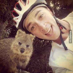 【萌死了】澳洲最新流行玩意,竟是和短尾矮袋鼠自拍?!
