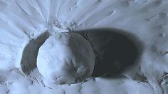 Fluxos: A Mesmerizing Experimental Claymation Short by Diego Akel