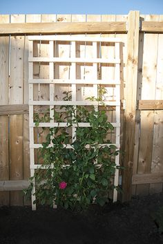 Flower Gardening For Beginners DIY Garden Trellis - Want to add an affordable accent to your garden? Craft a simple DIY trellis for vegetables and plants, privacy, or for an accent in your garden. Backyard Garden Landscape, Modern Backyard, Diy Garden, Shade Garden, Garden Projects, Garden Landscaping, Garden Bed, Backyard Shade, Big Backyard
