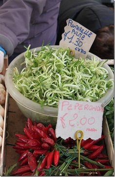 Puntarelle; Rome; Campo dei Fiori market.