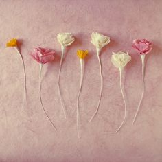 Crepe paper flowers- would look cute in vases from Grandma K after the party.