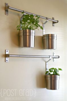 Hang plants in kitchen using IKEA GRUNDTAL - Herb Wall | Post Grad | www.nicolelitton.com