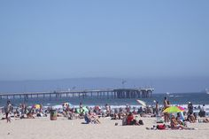 Sunbathers near Venice Beach Pier. Venice Beach, Seaside, Beaches, Sailing, Cities, Dolores Park, Coastal, Wildlife, Bucket