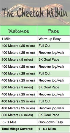 Speed training workout thats killer but awesome! 400 and 800M repeats