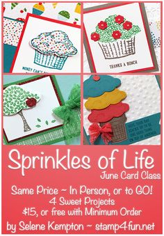 Stamp 4 fun with Selene Kempton: June's Card Class of the Month ~ in Person or To Go, Featuring the Stampin' Up! Sprinkles of Life Stamp Set