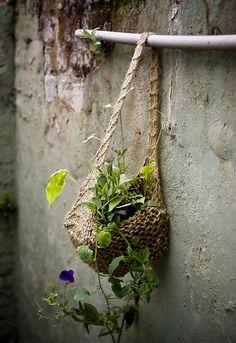 flores en mimbre*