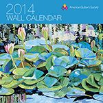 AQS 2014 Wall Calendar (from American Quilter's Society)