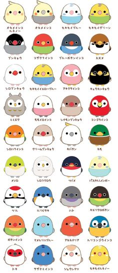 Birds Corps Popularity Index results announcement ☆ Cartoon Bird Drawing, Cartoon Birds, Cute Cartoon Animals, Funny Birds, Cute Birds, Cute Animals, Cute Animal Drawings, Bird Drawings, Kawaii Drawings