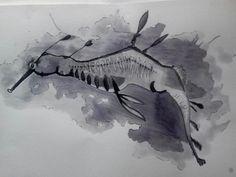 Pen/Ink Wash - Leafy Sea Dragon