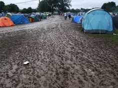 Festival mud. Please not this year
