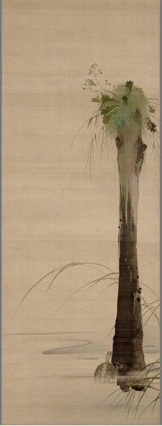 Turtle. Shibata, Zeshin, 1807-1891, Japanese hanging scroll. Nineteenth century.  UC Merced