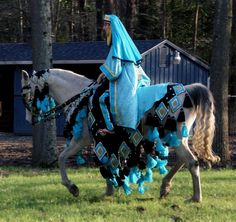 images of mounted arabian native costume class | Chelsey's Custom Native Arabian Horse Costumes