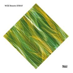 """Here is a brand new song titled """"Stray"""" by British indie rock/dream pop band, Wild Beasts, an unreleased track which didn't make the final cut to their album 'Smother'. The pretty slow track was released on Christmas with the following extension of gratitude toward their fans:     So as an end of year treat we'd like to share this unreleased track from the Smother album sessions called 'Stray'.    Wild Beasts    x"""