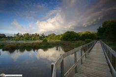 Lagoa de Bertiandos uma paisagem protegida no âmbito regional em portugal.