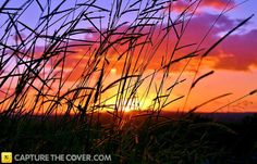 Stunning Waterford sunset #CaptureTheCover entry - by Cheryl in Brisbane's Logan City, Beenleigh Region. Click to enter your photos!