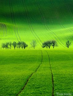 Green lines by Tomáš Vocelka / (Moravia, Czech Republic) Green Wallpaper, Nature Wallpaper, Beautiful World, Beautiful Places, Landscape Photography, Nature Photography, Photo Macro, Green Fields, Green Landscape