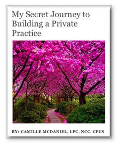 E-book: Private Practice Journey