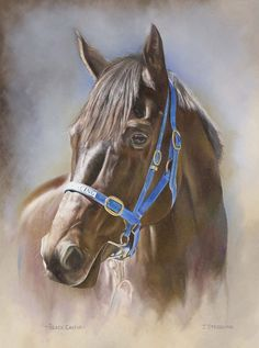 BLACK CAVIAR Print, Limited Edition Horse Racing Painting by Artist Joanna Stribbling