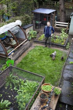 Urban growth: A gardening guru is getting children hooked on the joys of growing fruit and vegetables.