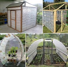 Make a plastic bottle greenhouse - 17 Simple Budget-Friendly Plans to Build a Greenhouse