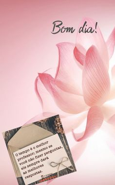Flowers Gif, Carpe Diem, Good Morning, Cards Against Humanity, Album, Inspiration, Instagram, Lorraine, Wallpaper