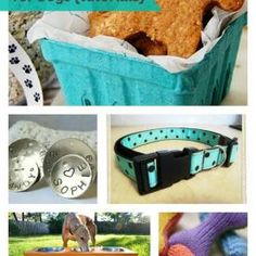 7 Handmade Gifts for Dogs {tutorials}