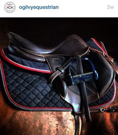 The most important role of equestrian clothing is for security Although horses can be trained they can be unforeseeable when provoked. Riders are susceptible while riding and handling horses, espec… Horse Gear, My Horse, Horse Tack, Horse Saddles, Riding Hats, Horse Riding, Riding Clothes, Riding Gear, Equestrian Outfits