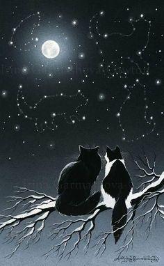 Animals And Pets, Cute Animals, Black Cat Art, Black Cats, Cat Drawing, Moon Art, Beautiful Cats, Cat Love, Crazy Cats