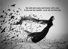 """""""Be wild and crazy and drunk with Love. If you are too careful, Love will not find you."""" ~~  Rumi"""