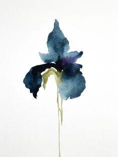 Iris No. 17