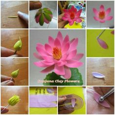 Pin by Maggie Anne on Making Flowers - on line Sugar Paste Flowers, Icing Flowers, Fondant Flowers, Edible Flowers, Paper Flowers, Lotus Cake, Fondant Flower Tutorial, Polymer Clay Flowers, Sugar Craft