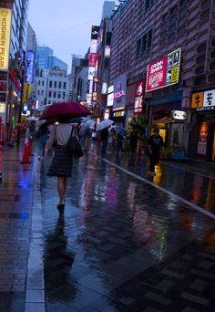 雨に濡れた舗道。青のパレット。