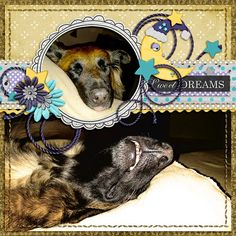 #GingerScraps -WelcomeWagon #Freebie GoodNight Sweetheart by #InspiredDesigns ChallengeTemplate by #LissyKay Designs Photo by kpmelly
