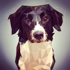 New pet portrait this is Mabel #graphicdesign #design #myart #art #artistsoninstagram #thedesigntip #thevectorproject #watersillustration #petportrait #dogsofinstagram #collie #dribbble #artfido #etsy #etsyshop by http://ift.tt/1ht4A78