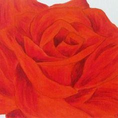 Rose rouge sur fond argenté