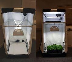 Grow tent Medical Marijuana Project Idea Cannabis and Mary Jane Info and How To www.MaritimeVintage.com    #cannibis #Marijuana #weed