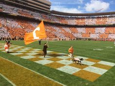 Why It's Great To Be A Tennessee Vol