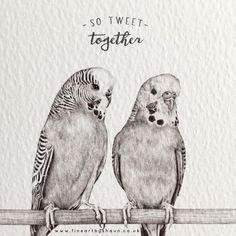 About Pencil Drawing Art - Pencil Art Drawings, Bird Drawings, Animal Drawings, Love Birds Drawing, Bird Sketch, Animal Sketches, Tier Fotos, Watercolor Bird, Cute Birds