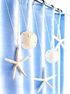 Seashells strung along a shower curtain