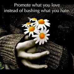 Promote what you love instead of bashing what you hate...