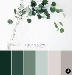 a eucalyptus-inspired color palette a eucalyptus-inspired color palette // green gray natural tones The post a eucalyptus-inspired color palette appeared first on Wandgestaltung ideen. Nature Color Palette, Green Colour Palette, Green Colors, Colours, Color Tones, Neutral Color Palettes, Silver Color Palette, Vintage Colour Palette, Paint Color Palettes