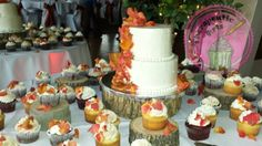Fall wedding cake and cupcakes.   Therapeutic Arts