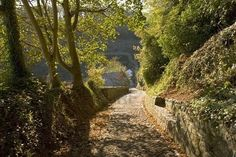 Picture of footpath to village clovelly devon england uk stock photo, images and stock photography. Devon And Cornwall, Devon England, North Devon, Wide World, Planet Earth, Beautiful Places, Country Roads, Landscape, Travel