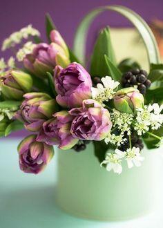 flowers.quenalbertini2: Flower arrangement | Yes-Yolan