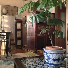 【アジアンテイストなお部屋】リゾートホテルのようなリラックス空間を作るコツ | RoomClip mag | 暮らしとインテリアのwebマガジン