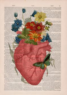 """culturenlifestyle: """" Anatomical Collages on Vintage Dictionary Paper Spanish shop PRRINT composes vintage prints with a contemporary sensibility on up-cycled old dictionary book pages. By infusing anatomical sketches and flower illustrations, PRRINT. Tumblr Wallpaper, Wallpaper Backgrounds, Iphone Wallpaper, Wallpaper Door, Book Wallpaper, Galaxy Wallpaper, Disney Wallpaper, Human Anatomy Art, Medical Art"""