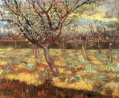 Apricot Trees in Blossom Vincent van Gogh https://hemmahoshilde.wordpress.com/2015/03/21/vincent-van-goghs-sunny-trees-during-a-rather-dark-period-in-his-life/ <----You're welcome to read more about these blossoming apricotrees and other trees painted by van Gogh :).