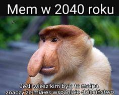 Polish Memes, Weekend Humor, Funny Mems, Nyan Cat, Wtf Funny, Good Mood, I Laughed, Haha, I Am Awesome