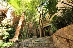 Stairs to main house, stonework, antique teak column and lush landscaping #agavesanmiguel #sanmiguelrealestate