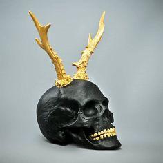 Skull.A
